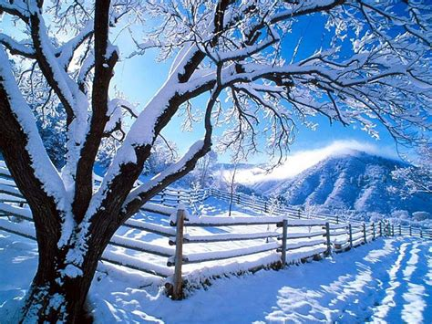 christmas free wallpaper snow wallpaper