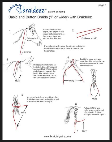 step by step written instructions for braids 10 best horse mane styling instructions images on