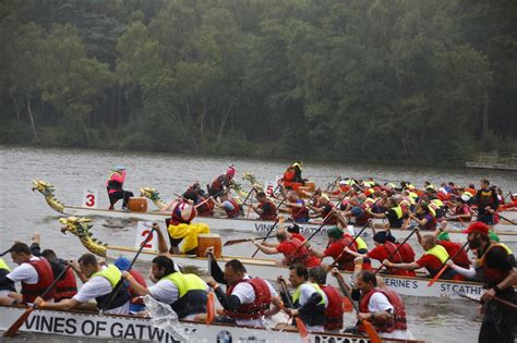 charlotte dragon boat festival 2017 st catherine s dragon boat festival a huge success