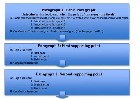 Writing A Three Paragraph Essay by 3 Paragraph Essay Writing