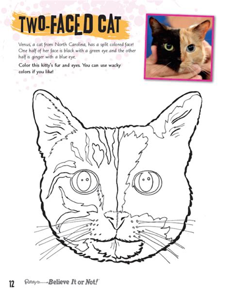 cool coloring books cool coloring book ripley s believe it or not
