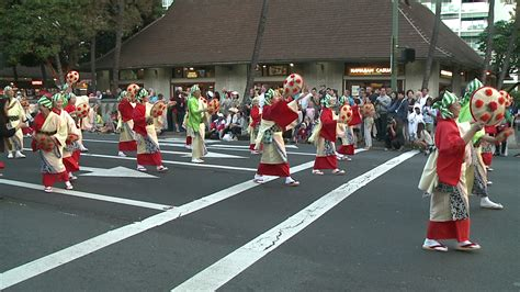 new year parade honolulu 2015 new year parade honolulu 2015 28 images your guide to