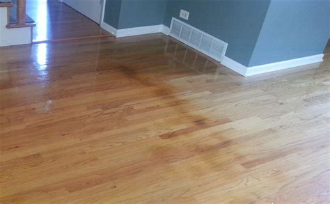 repairing water damaged hardwood floors mr floor chicago