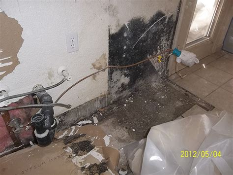 Mold In Apartment In California 187 Property Mold Removal Sacramento