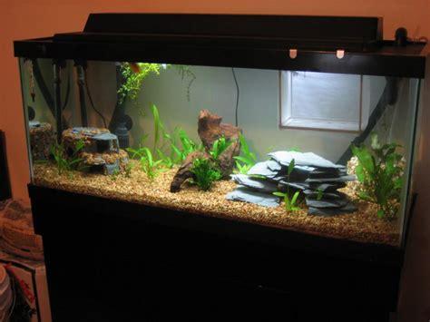 light for 30 gallon aquarium 30 gallon aquarium dimensions 1000 aquarium ideas