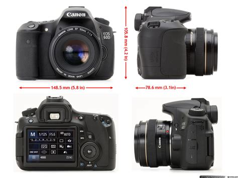 Kamera Canon Eos D60 canon eos 60d review digital photography review