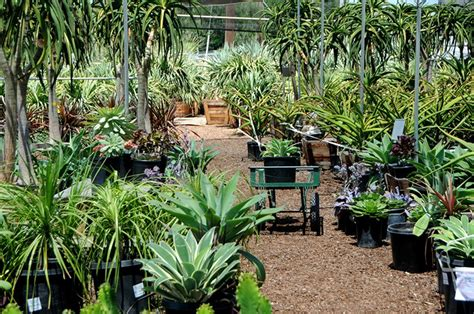 Farm And Garden By Owner by 80 Orange Co Farm Garden By Owner Craigslist Large Size