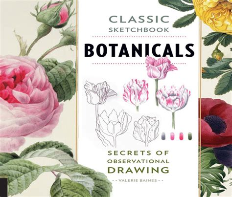 classic sketchbook botanicals secrets 1631591398 email from andrew isles natural history books
