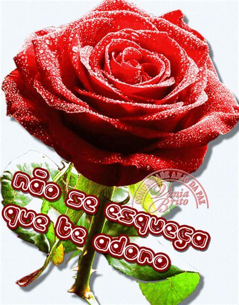 imagenes de rosas para enamorar 18 im 225 genes de rosas para enamorar im 225 genes para enamorar