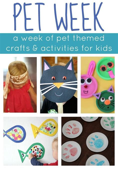 fun learning activities for 1845908929 1000 images about preschool projects art math science on preschool no time and