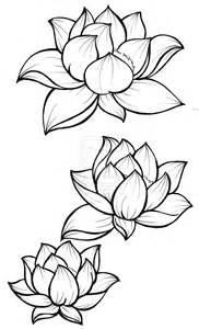 Drawing A Lotus Flower Lotus Blossom Tattoos On
