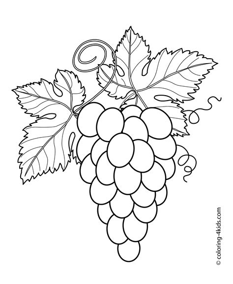 Grapes Coloring Pages To Print by Grape Coloring Pages To Print Coloring For 2018