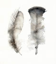 turkey feathers archival print feather by amberalexander