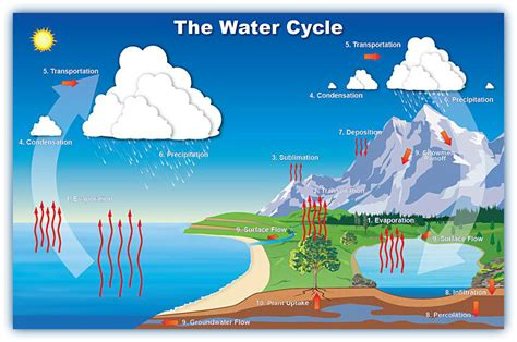 water cycle placemat science water cycle 5th grade science