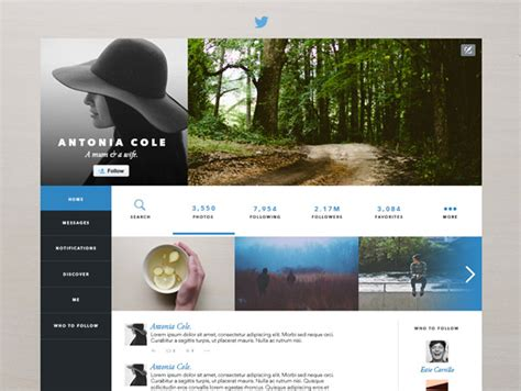 layout social network 30 unofficial redesigns of popular social media sites idevie