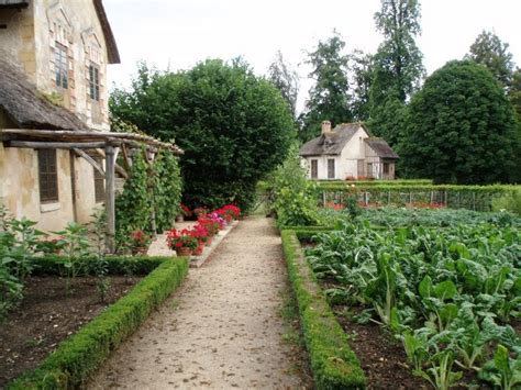 Front Yard Vegetable Garden The Great Outdoors Pinterest Front Yard Vegetable Gardens