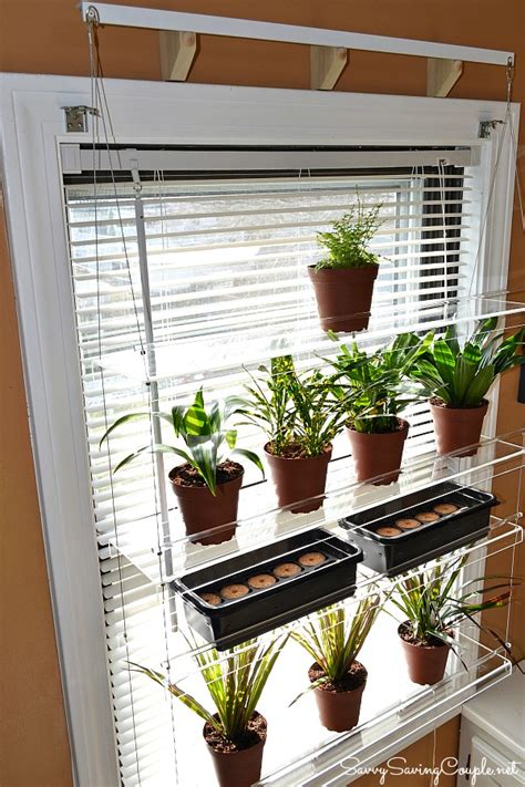 Plant Shelf For Window by Kinds Of Shelves Hanging Plants Decoration Idea Homesfeed