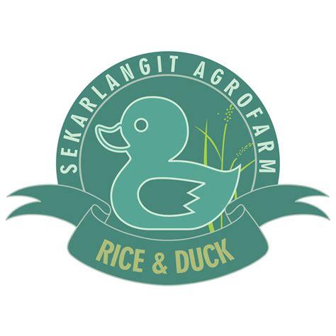 Jual Dod Bebek Peking Semarang jual dod dan karkas bebek beranda