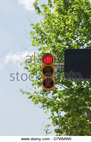 traffic lights with amber light on. amber prepare to go