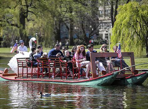 swan boat season in boston swan boats open for the season boston