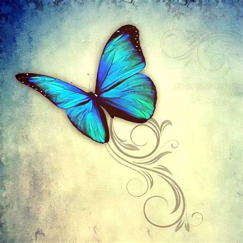 blue butterfly tattoo design