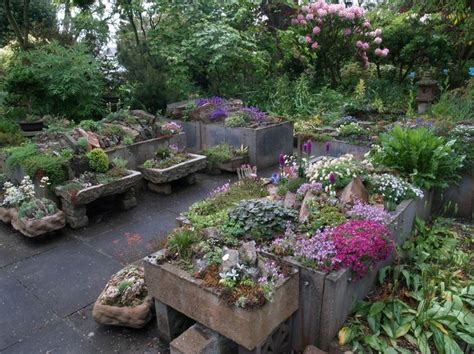 Alpine Planters by 17 Best Images About Alpine Planters On