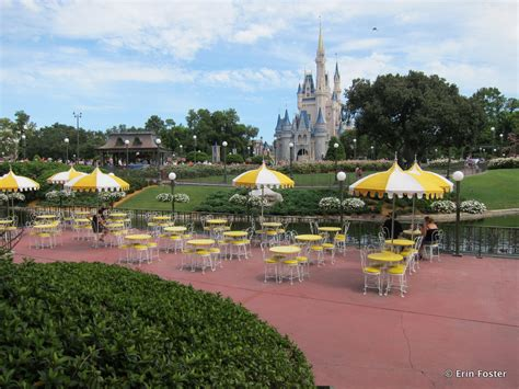 disney theme parks 13 questions and answers about bringing your own food to