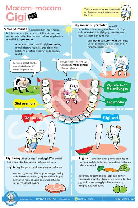 Macam Macam Pasta Gigi poster macam macam gigi poster dental