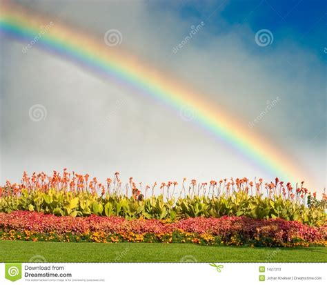 Rainbow And Flowers Stock Photos - Image: 1427313 Horse Background Clipart