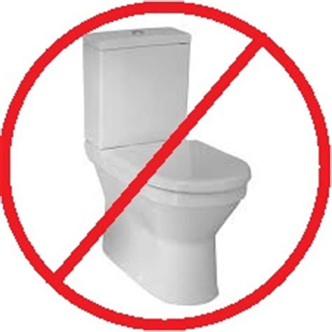 do not flush these things down your toilet in phoenix