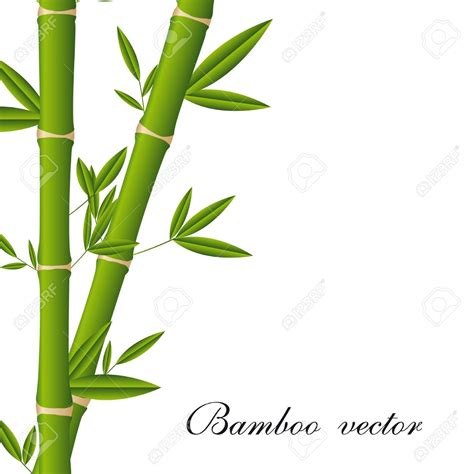 bamboo clip single clipart bamboo stick pencil and in color single