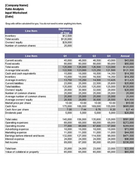 financial ratio analysis template excel 240 best images about excel templates ideas
