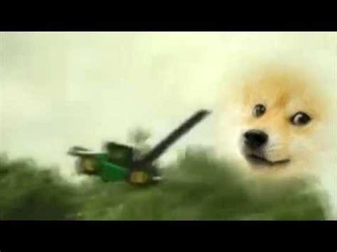 upset  doge youtube