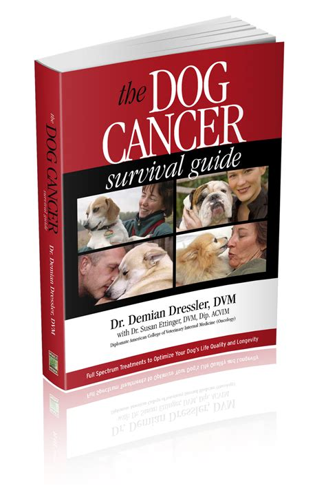 Book Review My One Stand With Cancer By Tania Katan by Talking Dogs At For Of A Book Review The