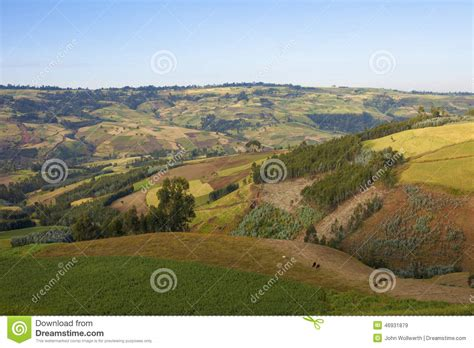 Patchwork Farms - patchwork of farms in stock photo image 46931879