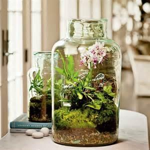 Plastic Fish Bowl Vase New Ways To Display Plants Indoors Lifestyle Home