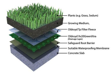 section of green roof pinterest the world s catalog of ideas