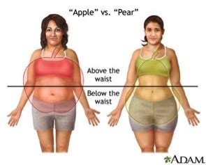 take the test: are you an apple or a pear? how to eat for