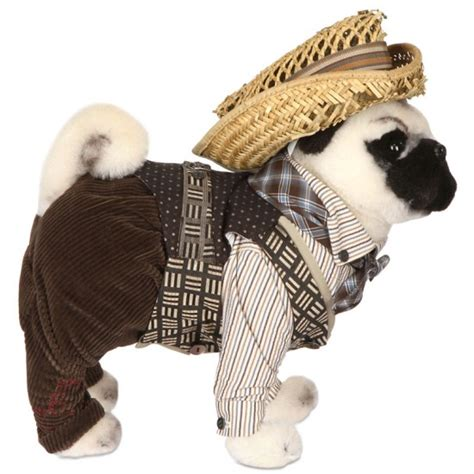 how much is a pug puppy worth fashion designers dress pug dogs for unicef