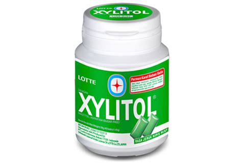 Lotte Xylitol Jeruk Nipis Mint 29g by Lotte Indonesia Xylitol