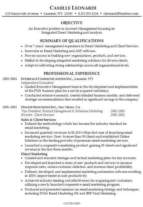 resume summary template professional resume sles with