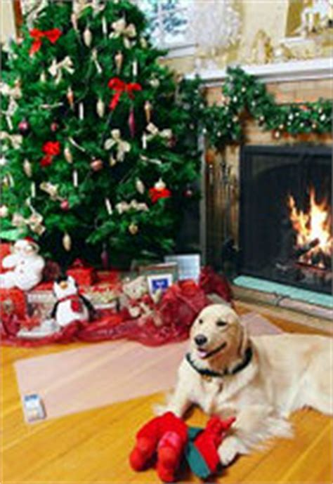 keeping your dog away from your tree mats