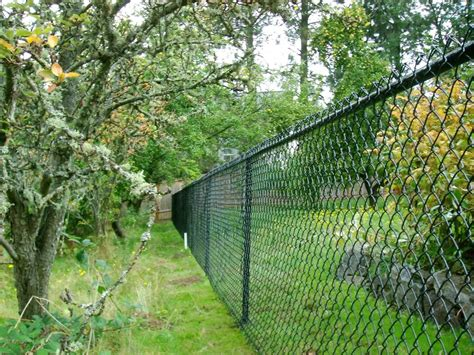 chain link fence portland and vancouver chain link fence superior fence