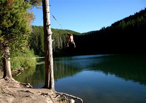 lake rope swing no lake house is complete without a rope swing into the