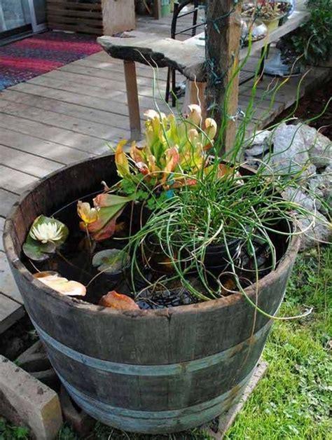 Indoor Water Garden Ideas 30 Surprising Indoor Water Garden Ideas