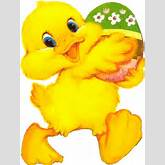 Cute ducks and chicks justwaiting to be selected for your Easter pages ...