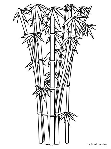Bamboo Tree Coloring Page | bamboo coloring pages for kids free printable bamboo tree