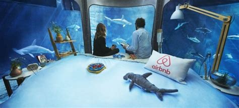 shark bedroom theme sleep inside a shark tank for free in airbnb s first