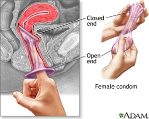Vagina during sex once the penis enters your vagina the vagina will
