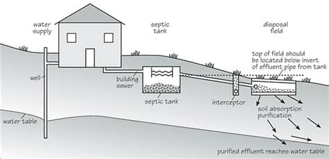 how layout gravity work septic tank systems how to choose the right one for your
